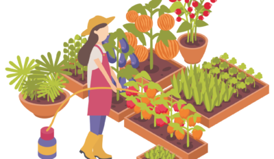 """Questionnaire  Jardin Partagé """"Incroyables comestibles"""" aux Castors Isabella"""